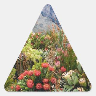 野生の花の南アフリカの花の展示 三角形シール