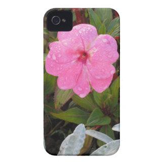 野生の花のiPhone 4の穹窖 Case-Mate iPhone 4 ケース