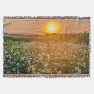 野生の花分野のブランケット上の日没 毛布