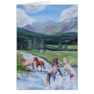 野生の馬の挨拶状 カード