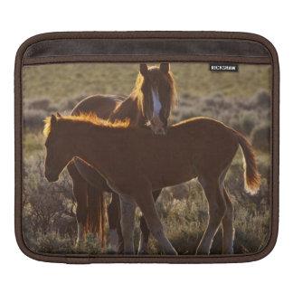 野生の馬のEquusのcaballusの)大人および子馬 iPadスリーブ