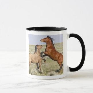 野生の馬のEquusのcaballusの)野生の馬2 マグカップ