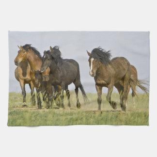 野生の馬のEquusのcaballusの)野生の馬3 キッチンタオル
