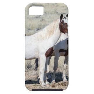 野生の馬 iPhone SE/5/5s ケース