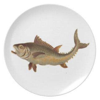 野生の魚プレート プレート