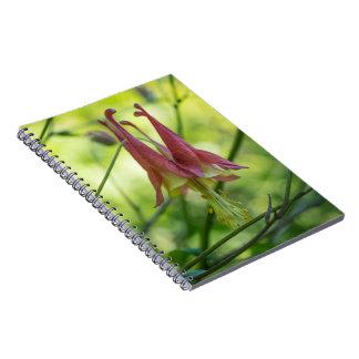 野生の鳩の赤い野生の花のノート ノートブック