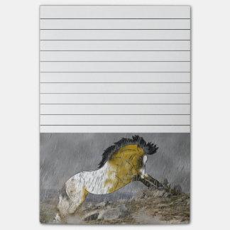 野生のBuckskinのAppaloosaの馬 ポストイット
