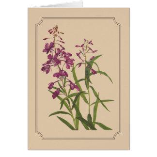 野生のFireweedのヴィンテージの植物のスケッチ カード