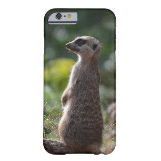 野生のMeerkat Barely There iPhone 6 ケース