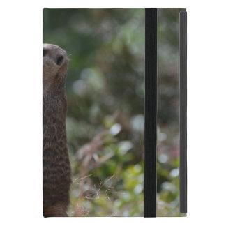 野生のMeerkat iPad Mini ケース