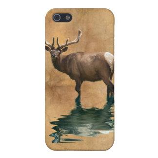 野生のWapitiのオオシカの野性生物動物の芸術 iPhone SE/5/5sケース