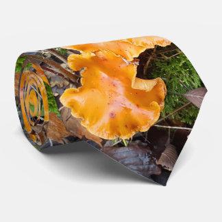 野生オレンジは写真自然の急速に広まります ネクタイ