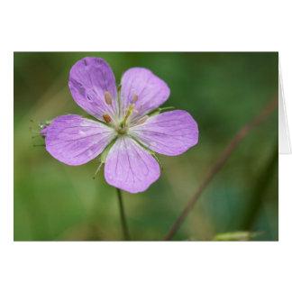 野生ゼラニウムのピンクの野生の花のカスタマイズ可能なカード カード