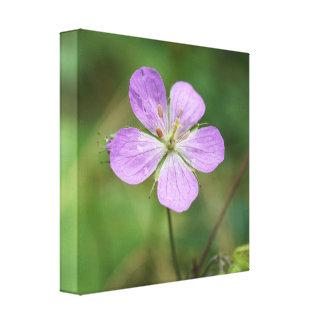 野生ゼラニウムのピンクの野生の花のキャンバスのプリント キャンバスプリント
