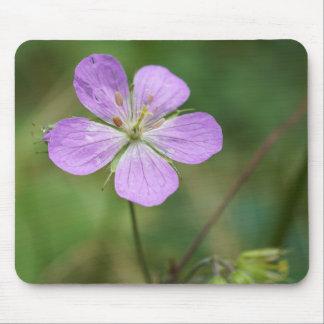 野生ゼラニウムのピンクの野生の花のマウスパッド マウスパッド