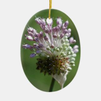 野生タマネギの野生の花の野生種のニンニク-葱類のvineale セラミックオーナメント