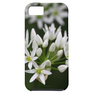 野生ニンニクかramsonsの葱類のursinum iPhone SE/5/5s ケース