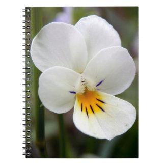 野生パンジーの螺線形の写真のノート ノートブック