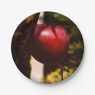 野生リンゴの偶然の木のカスタムな紙皿7つ ペーパープレート