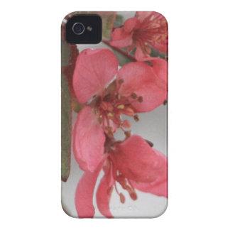野生リンゴの花 Case-Mate iPhone 4 ケース