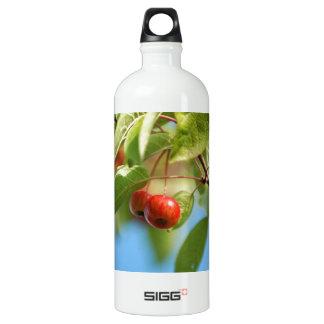 野生リンゴ ウォーターボトル