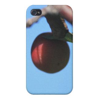 野生リンゴIphone 4/4s Speckの例 iPhone 4/4Sケース