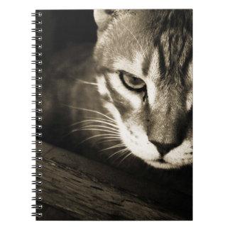 野生猫のノート ノートブック