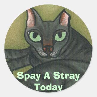 野生猫は、空電を-カスタマイズ今日卵巣摘出します ラウンドシール