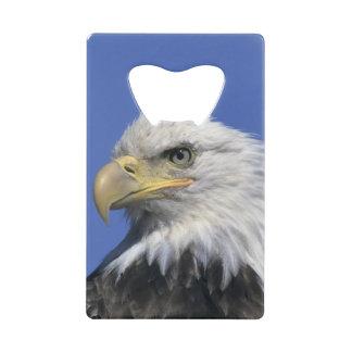 野生白頭鷲、(Haliaeetusのleucocephalus) ウォレット 栓抜き