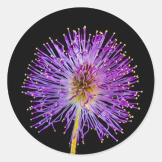 野生花のイメージ ラウンドシール