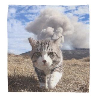 野良猫ニャン吉【活動期】 バンダナ