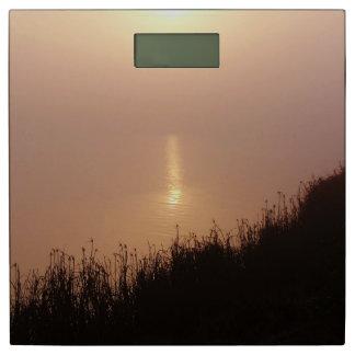 金ゴールドの軽い日の出の海のヤシの木の海のビーチ 体重計