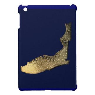 金フロリダのipadカバー iPad miniケース