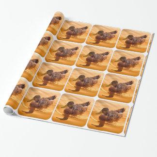 金マガモの反射のすべての行事の紙 ラッピングペーパー