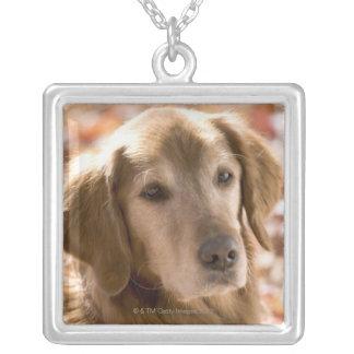 金ラブラドル・レトリーバー犬犬の閉めて下さい シルバープレートネックレス