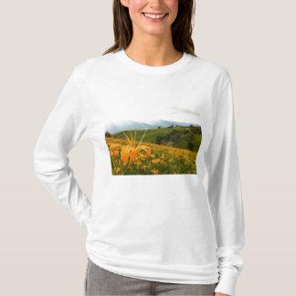 金ワスレグサの花の谷 Tシャツ