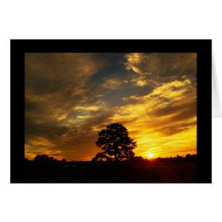 金夢の農場の日没 カード
