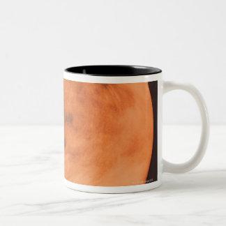金星 ツートーンマグカップ