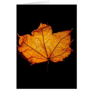 金秋の葉 カード
