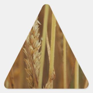 金穀物 三角形シール