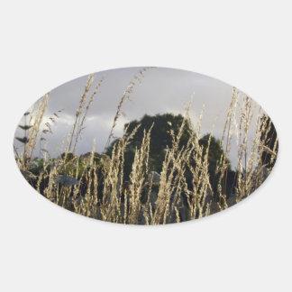 金草 楕円形シール