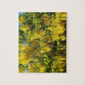金雨木の美しく黄色い花 ジグソーパズル