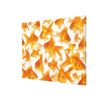金魚の大きいグループを示す背景 キャンバスプリント