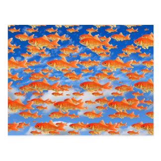 金魚の天国 ポストカード
