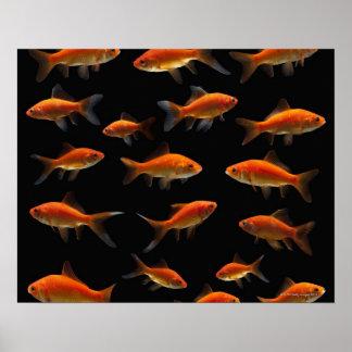 金魚2 ポスター