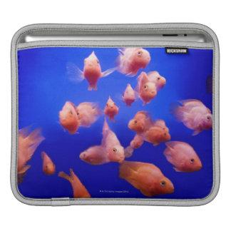金魚2 iPadスリーブ