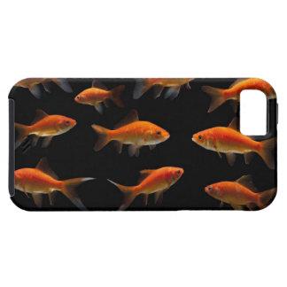 金魚2 iPhone SE/5/5s ケース