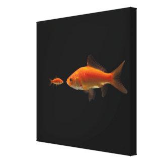 金魚5 キャンバスプリント