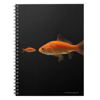 金魚 ノートブック