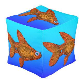 金魚 プーフ